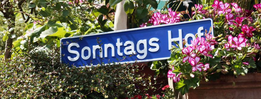 Sonntags Hof Langenfeld Bohnen Selberpflücken